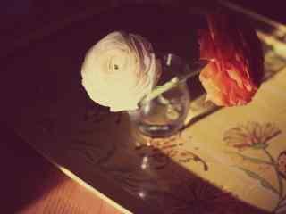 玫瑰典雅壁纸桌面
