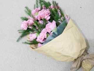 清新康乃馨花束桌面壁纸