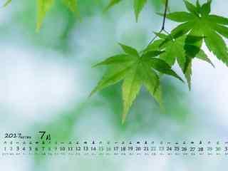 2017年7月日历植物护眼壁纸