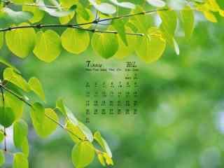 2017年7月日历绿色植物护眼壁纸