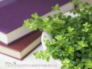 2017年7月日历绿色植物清新桌面壁纸