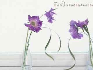 2017年7月日历小清新花朵桌面壁纸