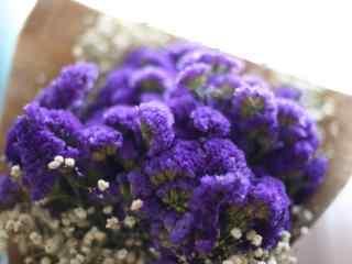 唯美好看的紫色勿