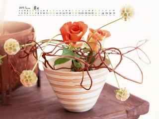 2017年8月日历盆栽植物图片壁纸