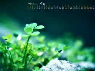 2017年9月日历绿色小清新叶子桌面壁纸