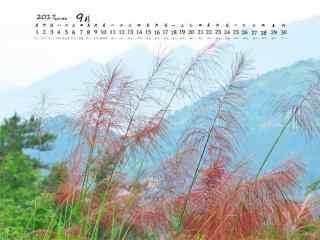 2017年9月日历美丽的植物桌面壁纸
