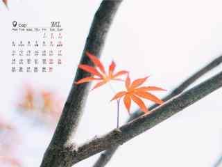 2017年9月日历文艺的红叶桌面壁纸