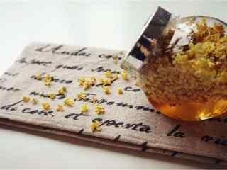 创意桂花蜜唯美桌面壁纸