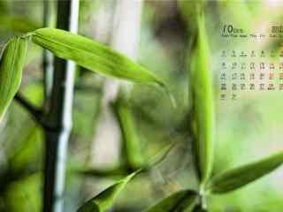 2017年10月日历绿色植物桌面壁纸
