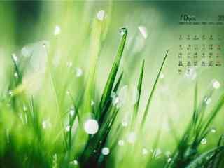 2017年10月日历小清新植物护眼壁纸