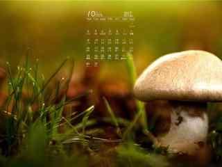2017年10月日历可爱的蘑菇图片壁纸