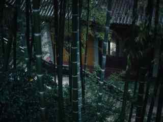 小清新竹林护眼桌