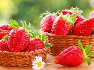 草莓 新鲜 水果