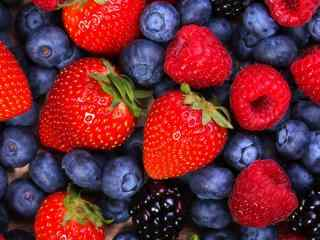 草莓 蓝莓 水果
