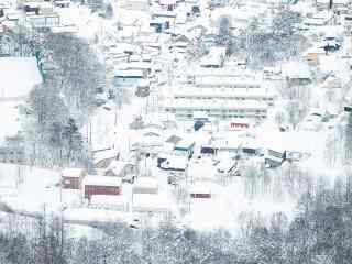 异国冬季雪景桌面