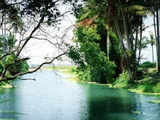 巴厘岛盛夏光景高