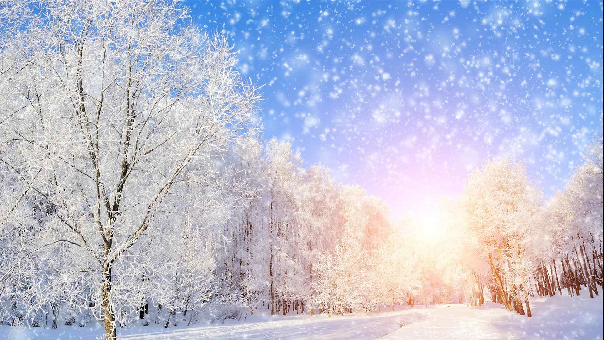 beautiful winter scenery wallpaper