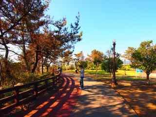 韩国济州岛公园剪影桌面壁纸
