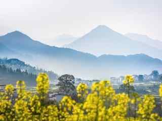中国五大文艺之都三月的婺源