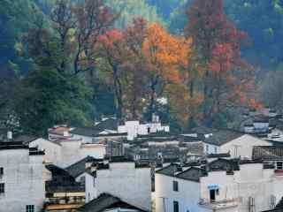 中国五大文艺之都秋天的婺源