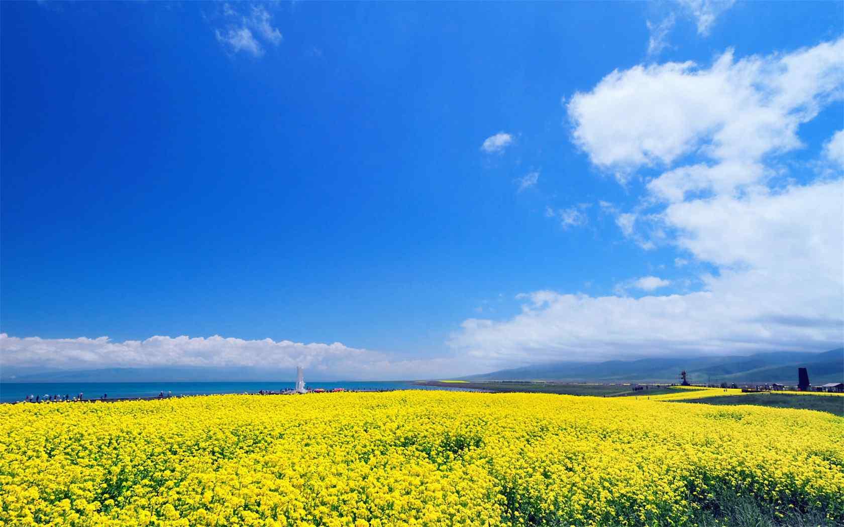 青海湖美景桌面壁纸第七辑