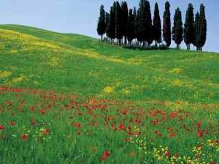 唯美的意大利自然