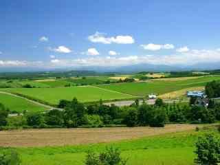 夏季北海道绿色田园风光桌面壁纸