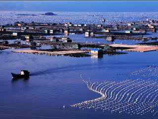 福建霞浦美丽的海上渔排桌面壁纸2