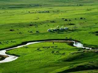 高清草原全景桌面