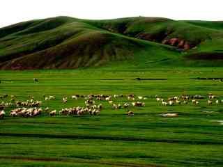 内蒙古草原山谷高清电脑桌面壁纸