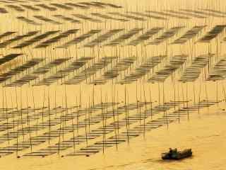福建霞浦最美的滩涂风光桌面壁纸