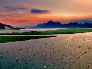 最美的滩涂霞浦日出风光桌面壁纸