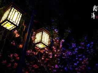 安逸的南浔古镇夜景风景壁纸