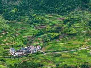 仙居景星岩绿色山村俯瞰摄影桌面壁纸