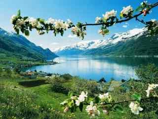 春暖花开的挪威峡湾自然风景高清电脑桌面壁纸