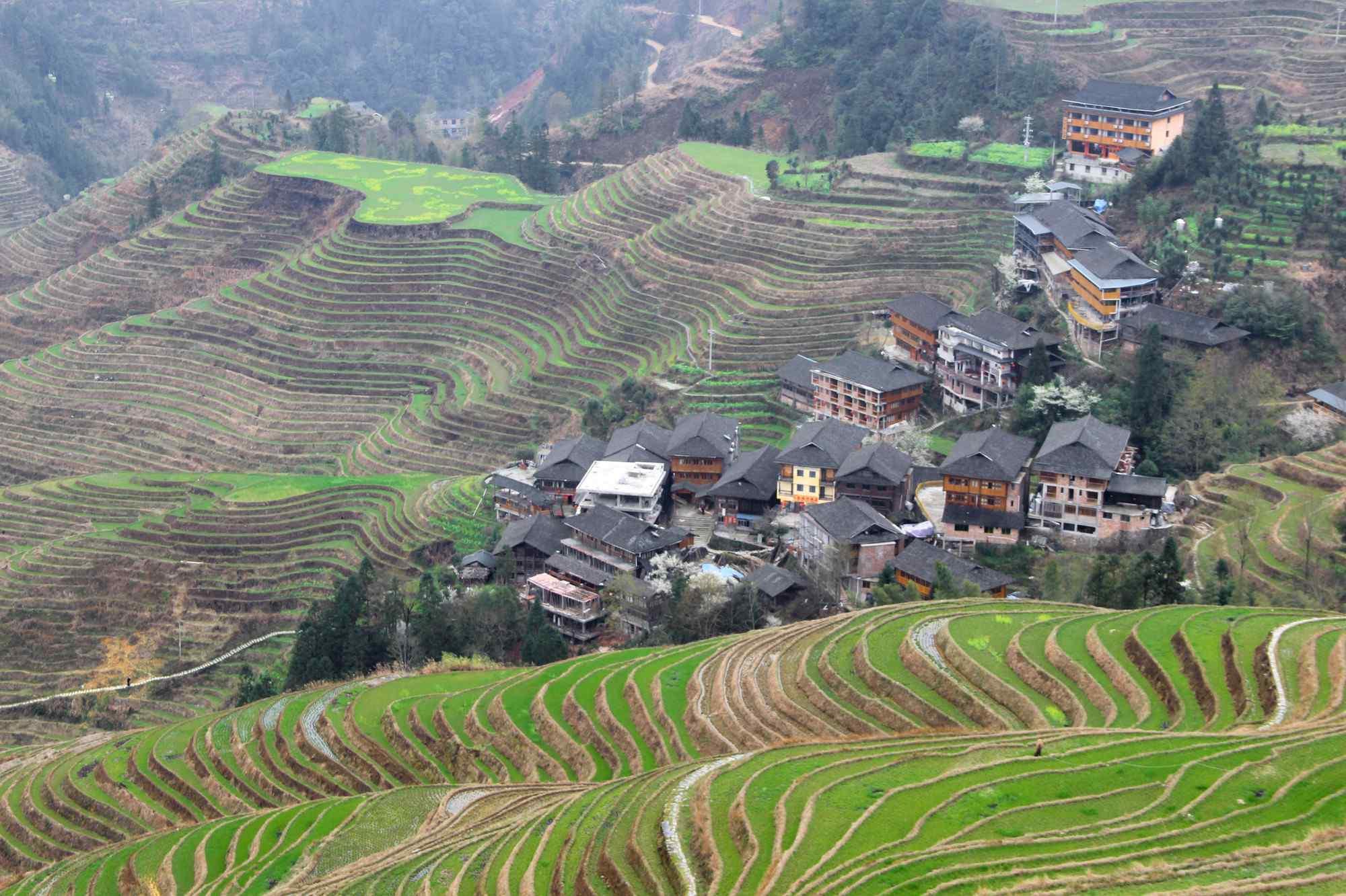 壮观的桂林梯田风景壁纸
