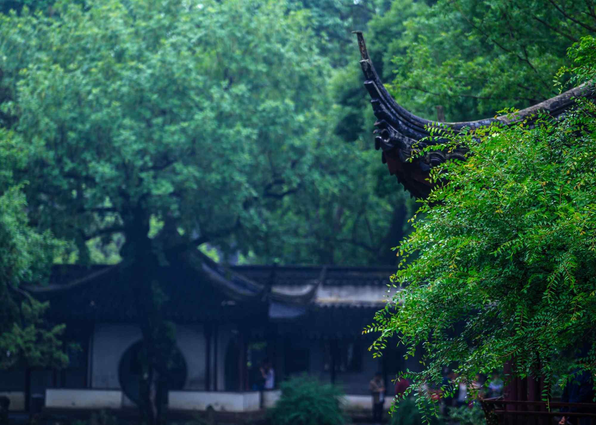 园林之城苏州拙政园风景壁纸