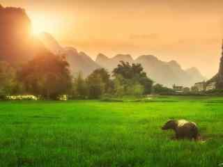 唯美暖色调桂林田园风景桌面壁纸