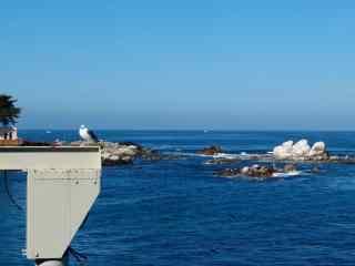美国公路风光加州一号公路沿岸海景桌面壁纸
