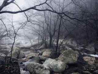 庐山雾色朦胧的溪涧桌面壁纸