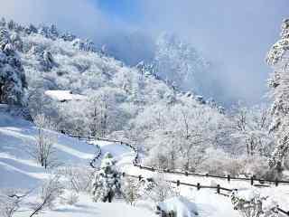 黄山栈道雪景桌面壁纸