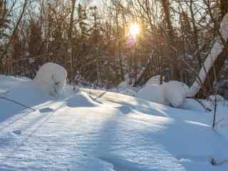 长白山清新唯美的雪景桌面壁纸