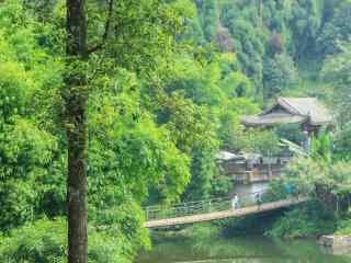 清新翠绿的峨眉山风景桌面壁纸