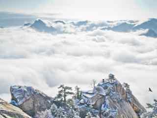 壮丽的雪后华山云海风景壁纸