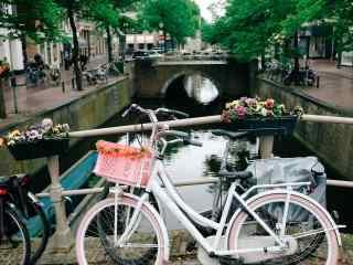 桥上的鲜花和单车