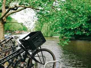 河边单车清新摄影桌面壁纸