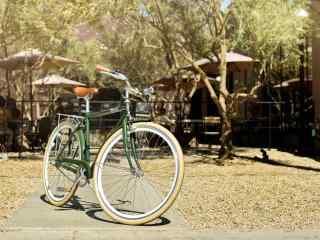 公园里的单车图片桌面壁纸