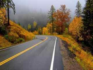 秋天唯美景色公路风景桌面壁纸
