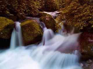 太白山红河谷秋天溪流图片桌面壁纸