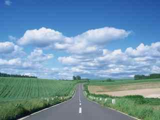 清新田园边的公路风景桌面壁纸